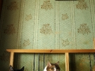 Март 2010. Групповой портрет. 04. Автор: Лидия Павлова, Москва