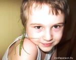 23. Друзья. Автор: Анна Федорова, Одинцово