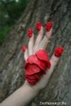 37. Всюду розы. Автор: Вера Шиганова, Вологда