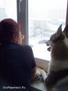 3. А мы сидим, в окно глядим. Автор: Марина Васильева. Гомель, Республика Беларусь