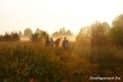 10. Раннее утро, туман... соревнования! Автор: Мария Токарева, г. Москва
