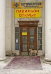 42. Страж. Автор: Валерия Наседкин. Москва