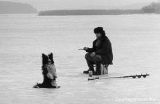 23. На рыбалке. Автор: Валерия Наседкин. Москва