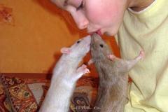 Сентябрь 2009. Животные и дети