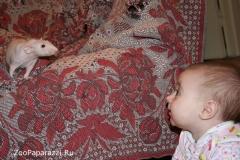 25. Без названия. Автор: Анастасия Пилько, Минск, Республика Беларусь
