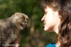 29. Разговор. Автор: Александра Морозова, Челябинск