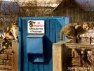 1. Вневедомственная охрана. Автор: Альфред Микус. Минск, Республика Беларусь