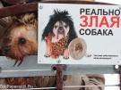 79. Без названия. Автор: Наталья Гуго. Санкт-Петербург