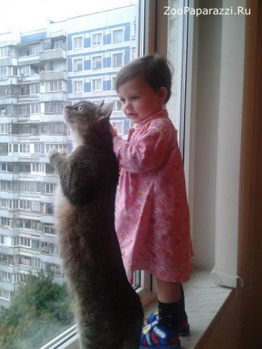 39. Без названия. Автор: Ксения Хазанова. Москва