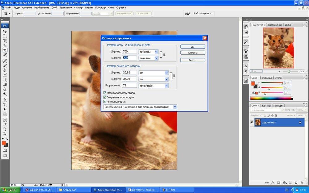 https://xn----8sbahrqjcl3ak1a.xn--p1ai/raznoe/vyrezat-figuru-v-fotoshope-kak-vyrezat-obekt-v-fotoshope-5-sposobov.html | 625x1000