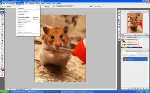 Как обрезать изображение и как задать ему требуемое разрешение